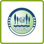Логотип топаэро