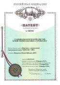 Патент на станцию очистки Евролос